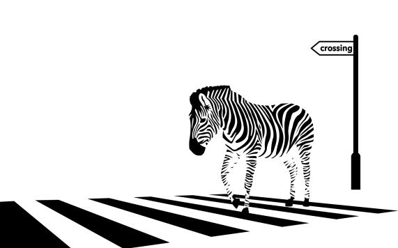zebra_crossing_vector_by_pachyderm11-d4abt84.jpg